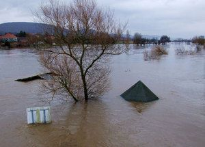 Flood dehumidifier